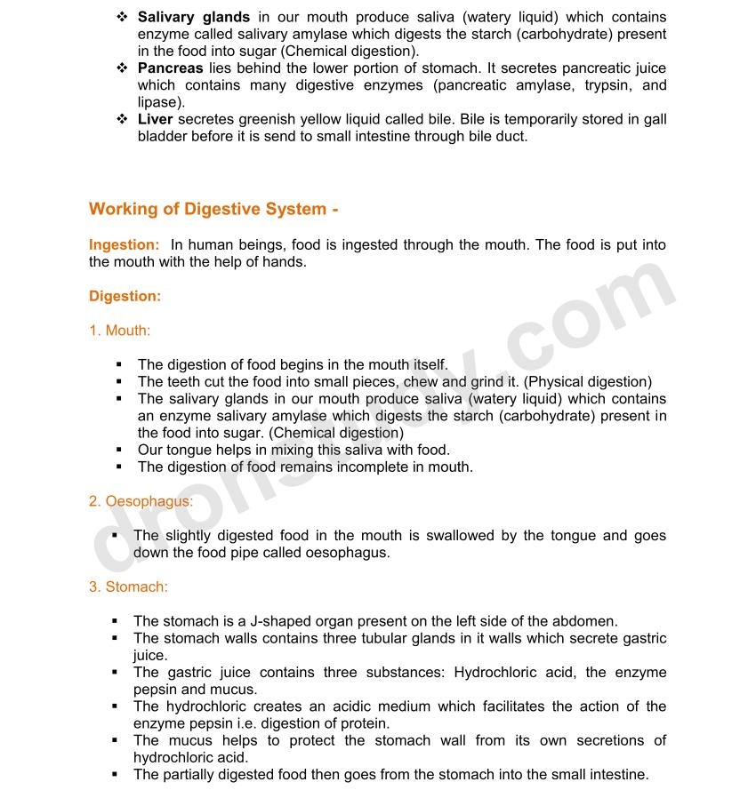 biology notes for class 10 pdf