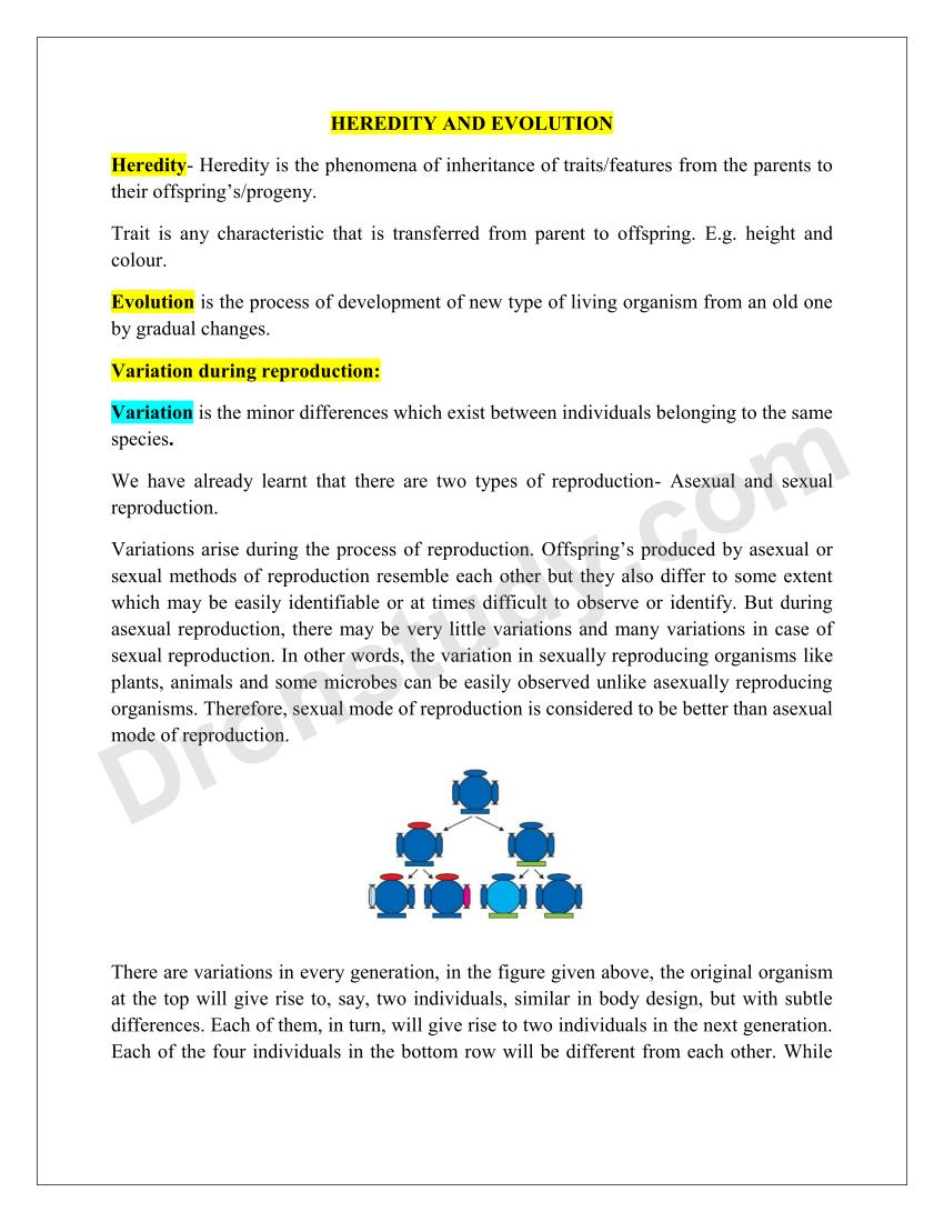 Heredity and Evolution : Chapter Notes - DronStudy com