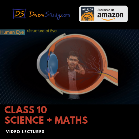 R S Aggarwal Class 10 Solutions - DronStudy com