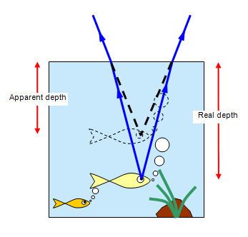 http://www.schoolphysics.co.uk/age11-14/Light/text/Real_and_apparent_depth/images/1.png