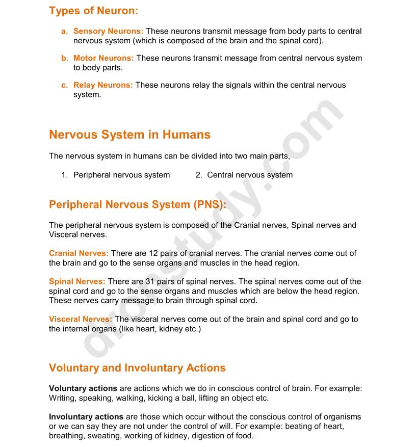 Chapter Notes Control And Coordination Class 10 Science