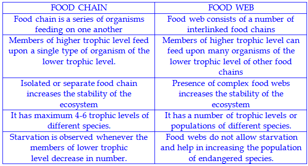Differences Of Food Chain And Food Web