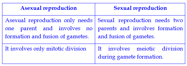 Asexually and sexually difference